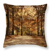 Secluded Entrance Throw Pillow by Jai Johnson