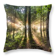 Second Coming Throw Pillow by Debra and Dave Vanderlaan