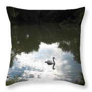 Serenity Throw Pillow by Corinne Elizabeth Cowherd