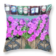 Seven Bottles Of Beer On The Wall Throw Pillow by Jan Amiss Photography