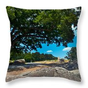 Shady Hilltop Throw Pillow by Paul W Faust -  Impressions of Light