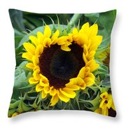 Sharing The Love Throw Pillow by Linda Mishler