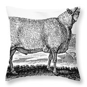 Sheep, C1800 Throw Pillow by Granger