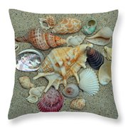 Shell Collection 2 Throw Pillow by Sandi OReilly