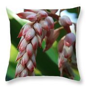 Shell Ginger Alpinia Zerumbet Tropical Flowers Of Hawaii Throw Pillow by Sharon Mau
