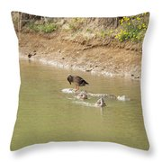 Should I Or Shouldn't I Throw Pillow by Corinne Elizabeth Cowherd