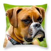 Sidney The Boxer Throw Pillow by Chris Thaxter