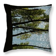 Silhouette Of A Tree With Connecticut Throw Pillow by Todd Gipstein