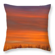 Silhouette Of Trees Against Sunset Throw Pillow by Don Hammond