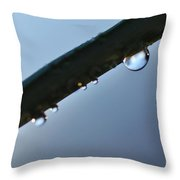 Silky Droplet Throw Pillow by Kaye Menner