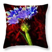 Single Bachelor  Throw Pillow by Chris Berry