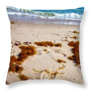 Sitting On The Beach Throw Pillow by Toni Hopper