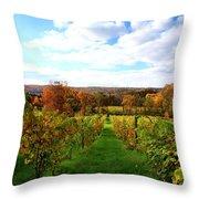 Six Miles Creek Vineyard Throw Pillow by Paul Ge