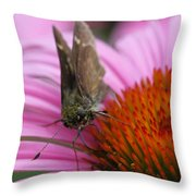 Skipper Butterfly Throw Pillow by Juergen Roth