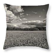 Skyway Throw Pillow by Rachel Cohen