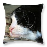 Sleepytime Throw Pillow by Art Dingo