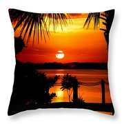 Slice Of Life Throw Pillow by Karen Wiles