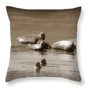 Smile Pretty For The Camera Throw Pillow by Donna Blackhall