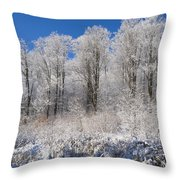 Snow Covered Maple Trees Iron Hill Throw Pillow by David Chapman