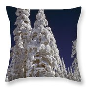 Snow-covered Pine Trees On Mount Hood Throw Pillow by Natural Selection Craig Tuttle