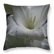 Snow White Glads Throw Pillow by Susan Herber