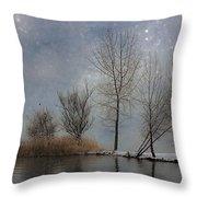 Snowfall Throw Pillow by Joana Kruse