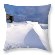 Snowy Day Throw Pillow by Heiko Koehrer-Wagner