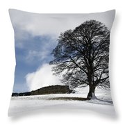 Snowy Field And Tree Throw Pillow by John Short