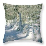 Snowy Footpath In Winter Wonderland Throw Pillow by Heiko Koehrer-Wagner