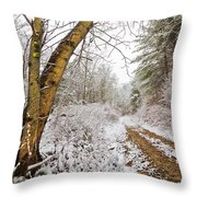 Snowy Watercolor Throw Pillow by Debra and Dave Vanderlaan