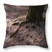 Soft Light On A Pink Carpet Of Fallen Throw Pillow by Stephen St. John