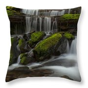 Sol Duc Stream Throw Pillow by Mike Reid