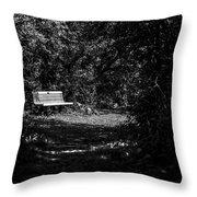 Solitude Throw Pillow by CJ Schmit