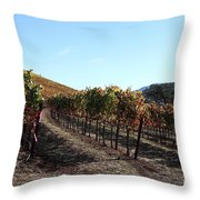 Sonoma Vineyards - Sonoma California - 5d19311 Throw Pillow by Wingsdomain Art and Photography