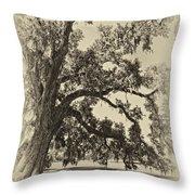 Southern Comfort sepia Throw Pillow by Steve Harrington