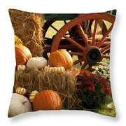Southern Harvestime Display Throw Pillow by Kathy Clark
