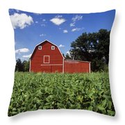 Soybean Field And Red Barn Near Anola Throw Pillow by Dave Reede