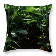Soybean Leaves Throw Pillow by Photo Researchers