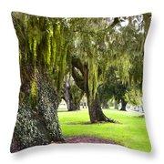Spanish Moss At Jekyll Island Throw Pillow by Debra and Dave Vanderlaan