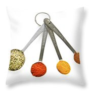 Spices In Measuring Spoons Throw Pillow by Elena Elisseeva