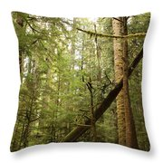 Spirit Of The Pacific Northwest Throw Pillow by Carol Groenen