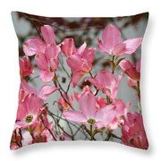 Spring Dogwood Tree Flowers Art Prints Pink Flowering Tree Throw Pillow by Baslee Troutman