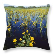 Spring Flood Plains With Wildflowers Throw Pillow by Norbert Rosing