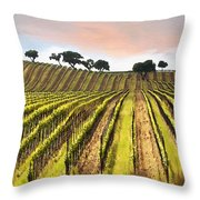Spring Vineyard Throw Pillow by Sharon Foster