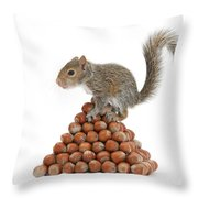 Squirrel And Nut Pyramid Throw Pillow by Mark Taylor