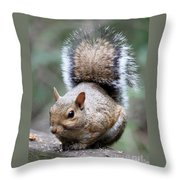 Squirrel Throw Pillow by Carol Groenen