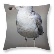 Standing Seagull Throw Pillow by Carol Groenen