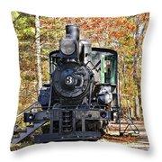 Steam Locomotive on Display Throw Pillow by Susan Leggett