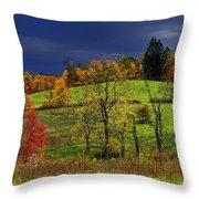 Stormy Autumn Morning Throw Pillow by Thomas R Fletcher