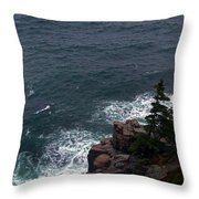 Straight Down Throw Pillow by Skip Willits